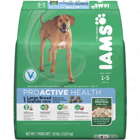 Iams Proactive Healtu Large Breed Dog Flod, 30 Lb