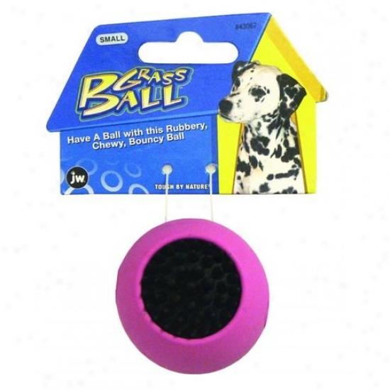 Jw 43067 Grass Ball