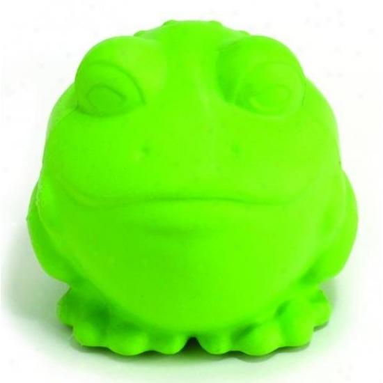 Jw 43070 Darwin The Frog