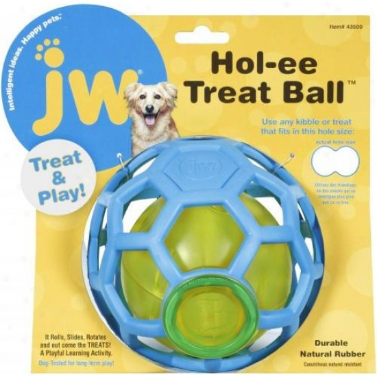 Jw 43500 Hol-ee Treat Ball