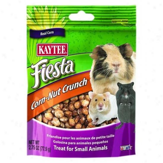 Kaytee 100508760 Fiesta Corn-nut Crunch Treat - Small Animals