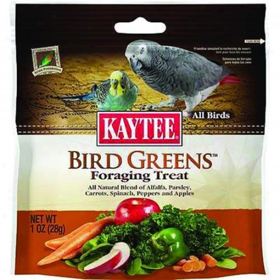 Kaytee 100510282 Foraging Treat Bird Greens - All Birds