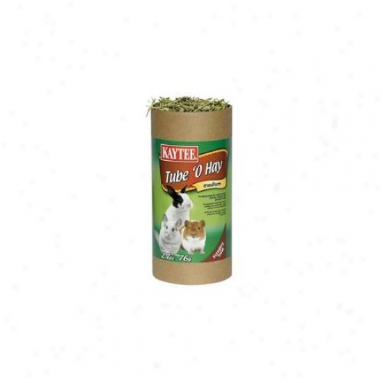 Kaytee Products Inc - Tube O Hay 2. 7 Ounce - 100504103