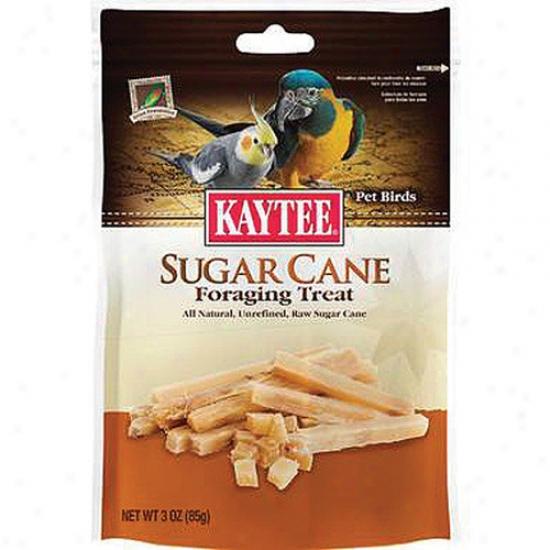 Kaytee Products Wild Bird Sugsr Cane Foraging Pet Bird Treat