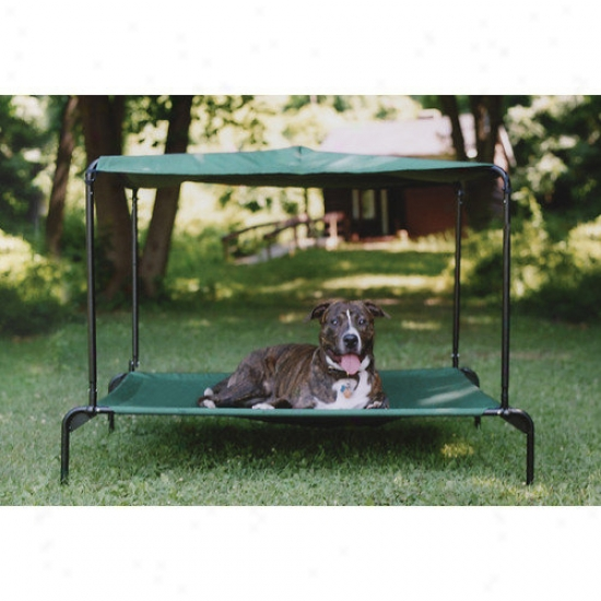 Kittywalk Systems Ulra Breezy Bed  In Green