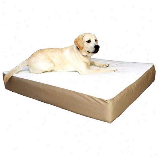 Large/extra Large 34x48 Majestic Fondling Orthopedic Double Pet Bed,multiple Flag