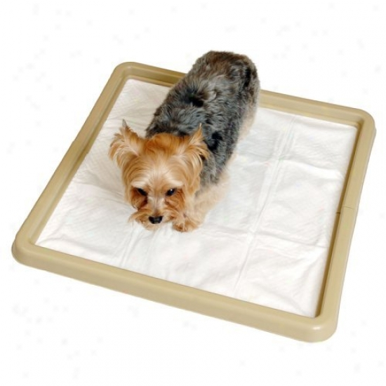 Little Stinker Housebreaking Pad Holder