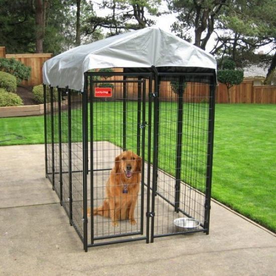 Lucky Dog 4 X 8 X 6 Ft. Uptown Welded Wire Dog Kennel