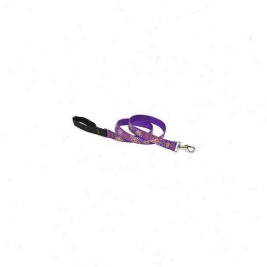 Lupine 6215 81 Inch Sunny Days 4 Ft.  Padded Handle Dog Leash