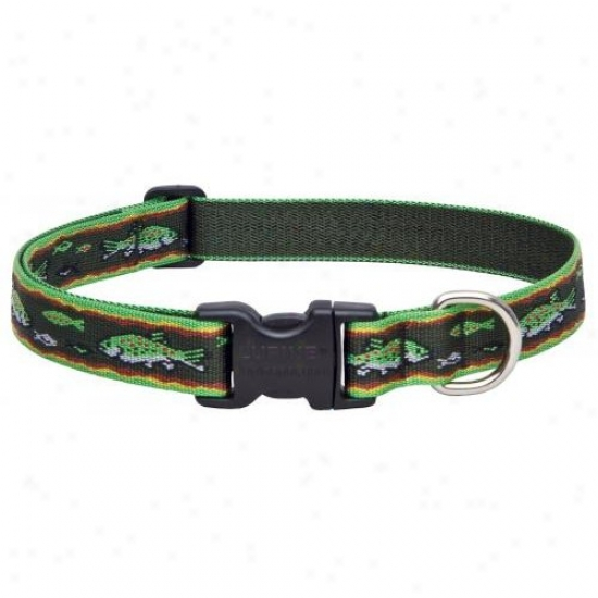 Lpine Inc 00052 1 Inch X 12 Inch-20 Inch Adjustab1e Trout Design Collar For Medium And Large Dogs