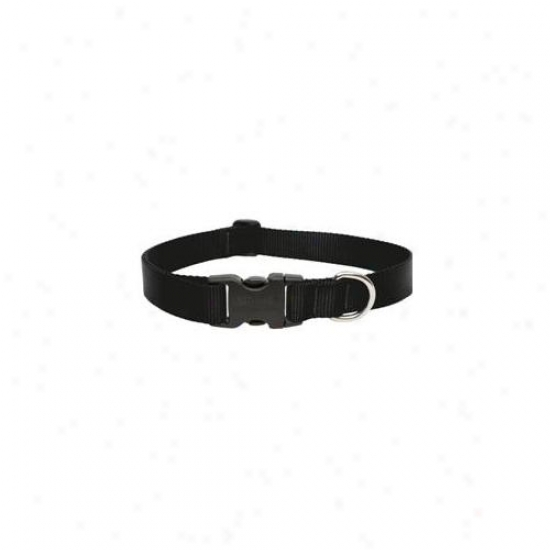 Lupine Inc 1inch X 16inch-28inch Adjustable Negro Collar For Medium & Large Dogs  27553