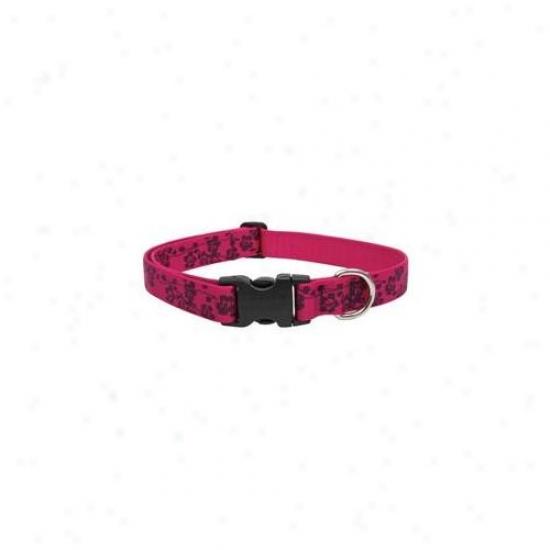 Lupine Inc 20252 1 Inch X 12 Inch-20 Inch Adjustable Plum Blossom Design Collar For Medium &
