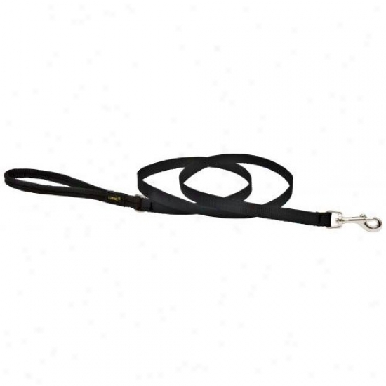Lupine Inc 27538 1/2 Inch X 4 Black Dog Lead