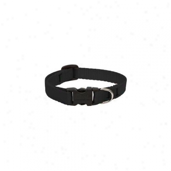Lupine Inc . 50inch X 6inch-9inch Adjustable Black Collar For Small Dogs & Puopies 27533