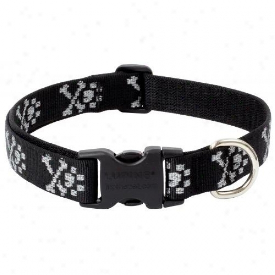 Lupine Inc 72253 1 Inch X 16 Inch-28 Inch Adjustable Bling Bonz Design Collar For Medium And Large D