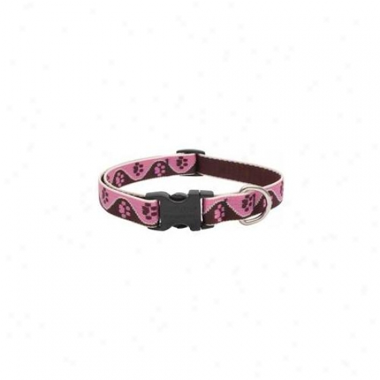Lupine Inc . 75inch X 9inch-13inch Adjustable Tickled Pink Dog Collar  54301