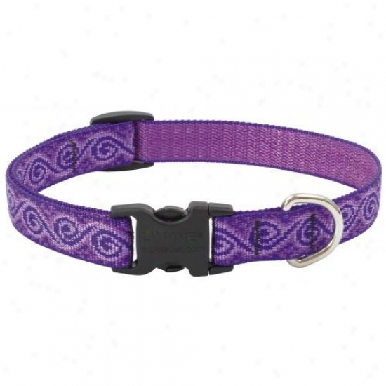 Lupine Inc 96902 3/4 Inch X 12 Inch-20 Inch Adjustable Jelly Roll Design Dog Collar