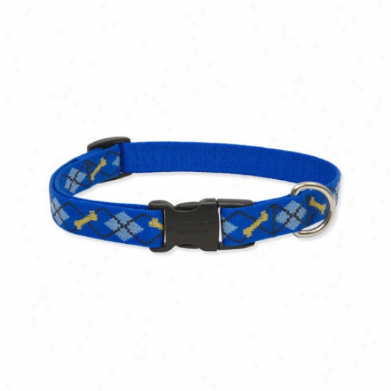 Lupine Pet Dapper Dog 3/4'' Adjustable Medium Dog Collar