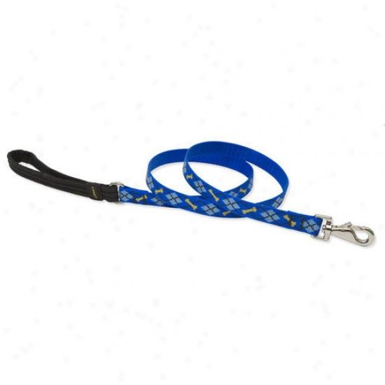 Lupine Pet Dapper Dog 3/4'' Means Dog Leash