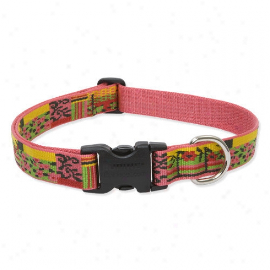 Wolfish Fondle Flower Patc h1'' Adjustable Large Dog Collar