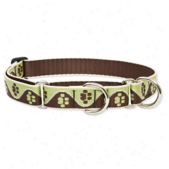 Lupine Pet Mu dPuppy 1'' Adjustable Large Dog Combo Collar