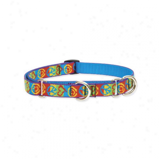 Lupine Pet Peace Pup 3/4'' Adjustable Medium Dog Combo Collar