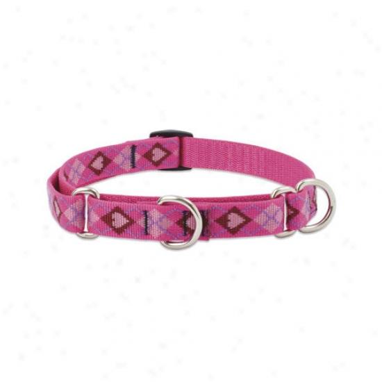 Lupine Pet Pup Love 3/4'' Adjustable Medium Dog Combo Collar