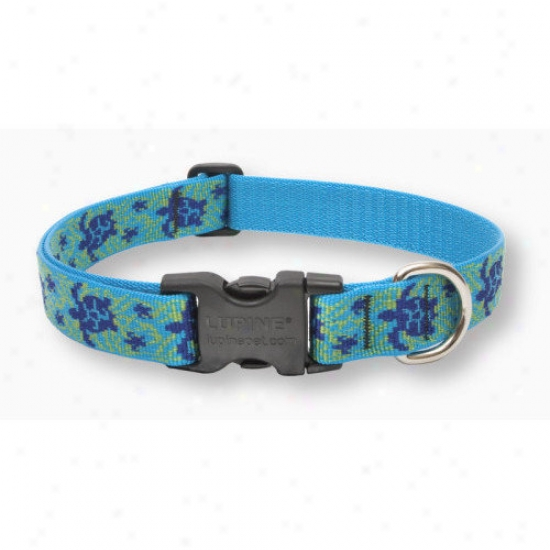 Lupine Pet Turtle Reef  1'' Adjustable Large Dog Collar