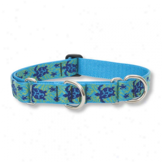 Lupine Pet Turtle Reef  1'' Adjustable Large Dog Combo Collar