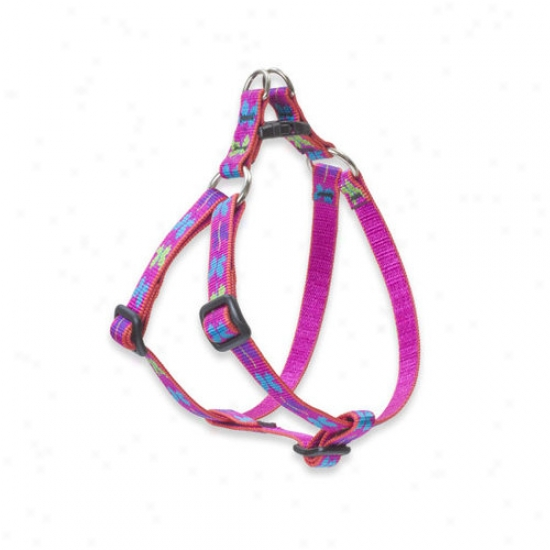 Lupine Pet Wing It 1/2'' Adjustable Small Dog Step-in Harness