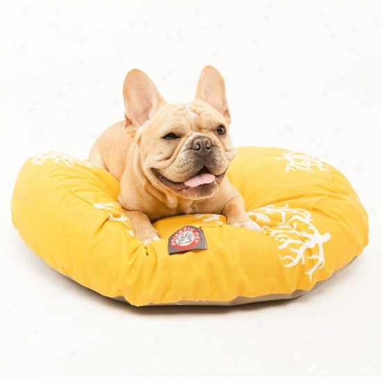 Majestic Pet Products Coral Round Pet Bed, Yellow