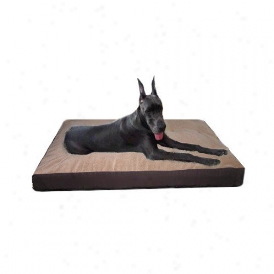 Mammoth Dog Beds Memory Foam Cratte Mat