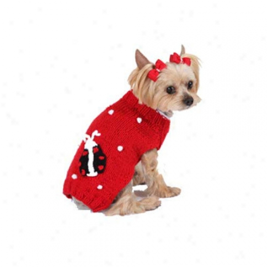 Max's Admit to intimate interview Bobble Lady Bug Dog Sweater