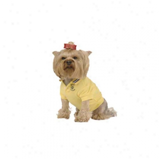 Max's Cllset Polo Dog Shirt