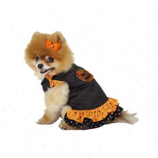 Max's Closet Ruffled Halloween Pumpkin Dog Dress