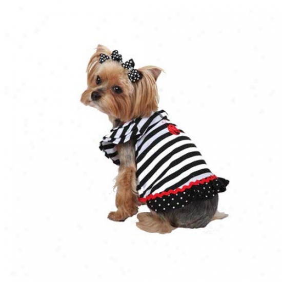 Max's Closet Stripeed Lady Bug Dog Dress
