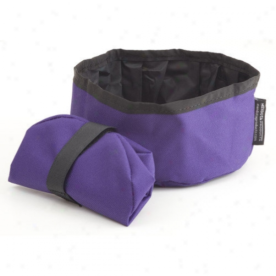 Mendota Collapsible Dish In Purple