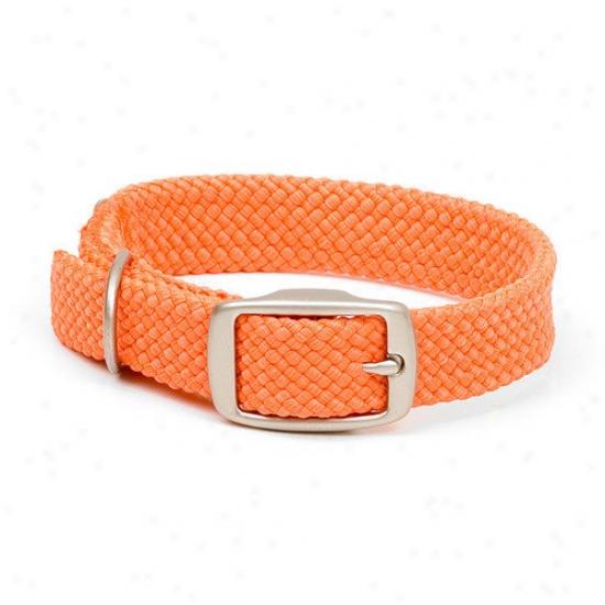 Mendota Double Braid Colpar In Orange / Brushed Nickel Hardware