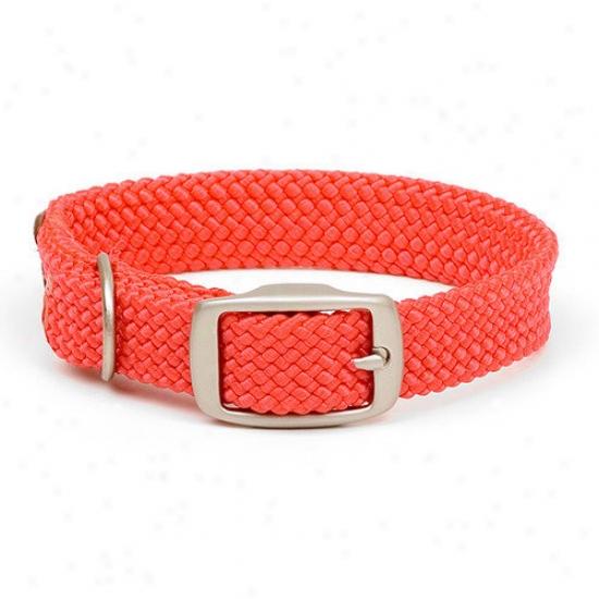 Mendota Double Plait Collar In Red / Brushed Nickel Hardware