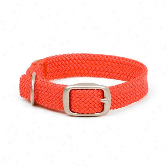 Mendota Double Braid Junior Collar In Red / Brushed Nickel Hardware