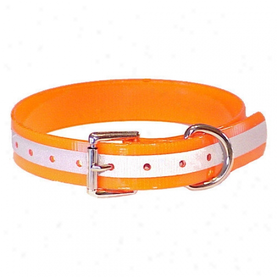Mendota Duraflect Standard Collar In Orange
