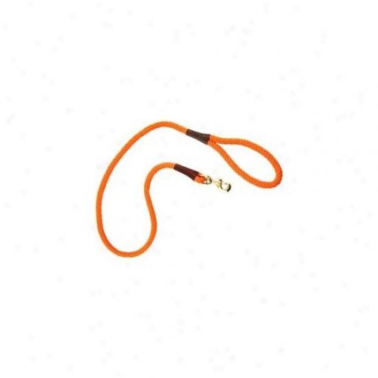 Mendota Me01519 Small Snap Leash 0. 375 Inch X 6ft - White