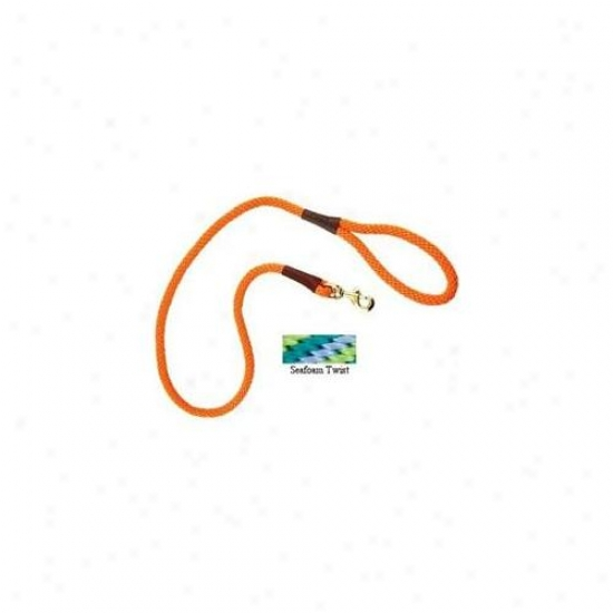 Mendota Me01537n Small 6 Foot Snap Leash - Seafoam