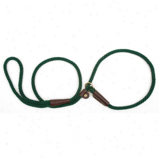 Mendota Small Slip Leash In Green