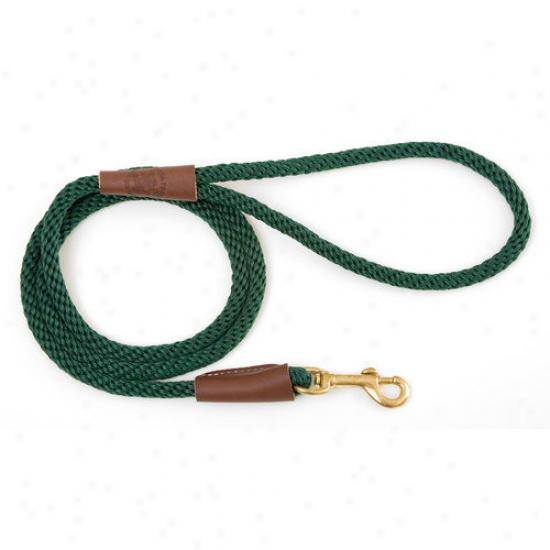 Mendota Small Sbap Leash In Green
