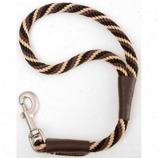 Mendota Twist Traffic Leash In Mocha
