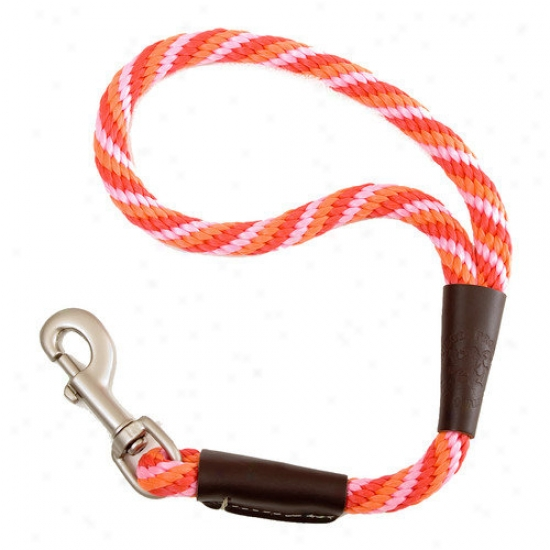 Mendota Twine Traffic Leash In Taffy