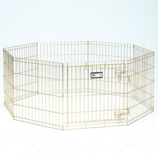 Midwest 24 In.gold Dog Exercise Pen With Door
