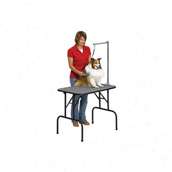 Midwest Homes For Pets 36'' Grooming Table With Arm