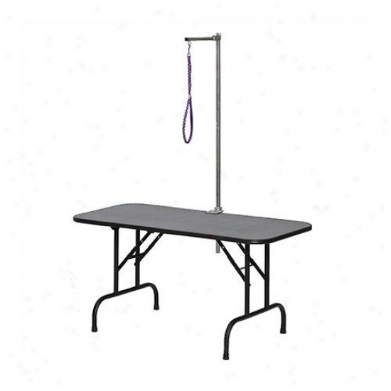 Midqest Homes For Pets 48'' Grooming Table With Arm